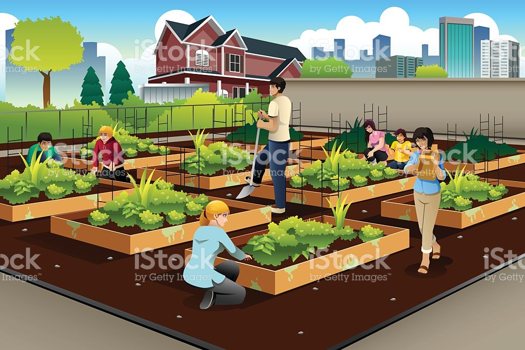 Day 1  URBAN FARMING- 2:00pm-4:00pm